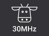 Logo 30MHz