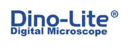 Logo Dino Lite