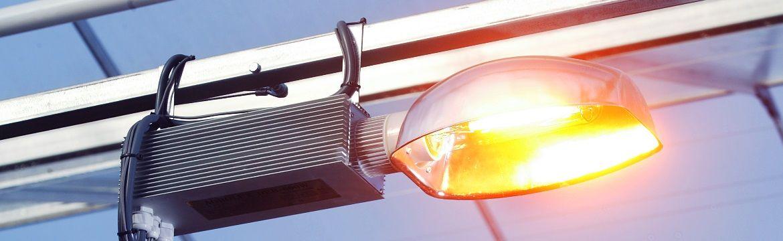 Assimilatielampen kiezen | Waar moet je op letten?