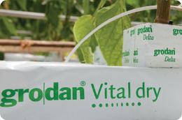 Grodan Vital Dry