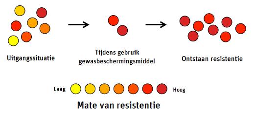 Resistentie tegen gewasbeschermingsmiddelen