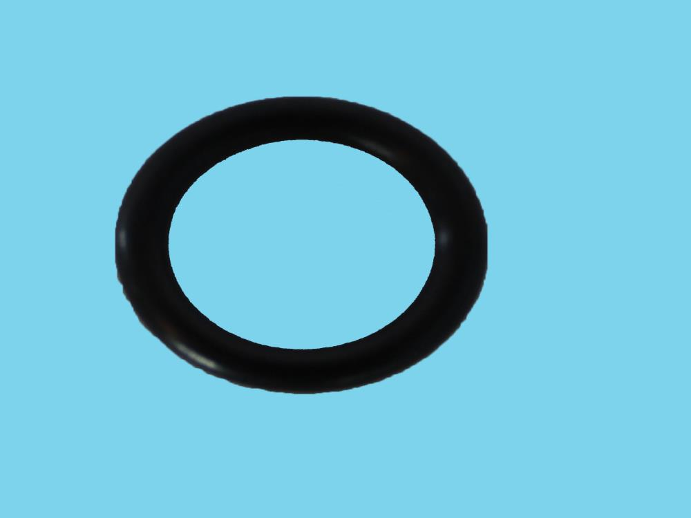 Am-SAF-ond  Sealing nut int, O-ring T134