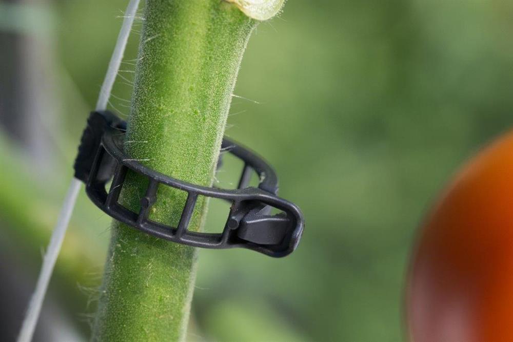 Brinkman clip 21 mm S zwart 10500