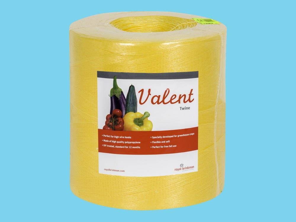 Touw Valent Twine 1/1200 geel 6kg