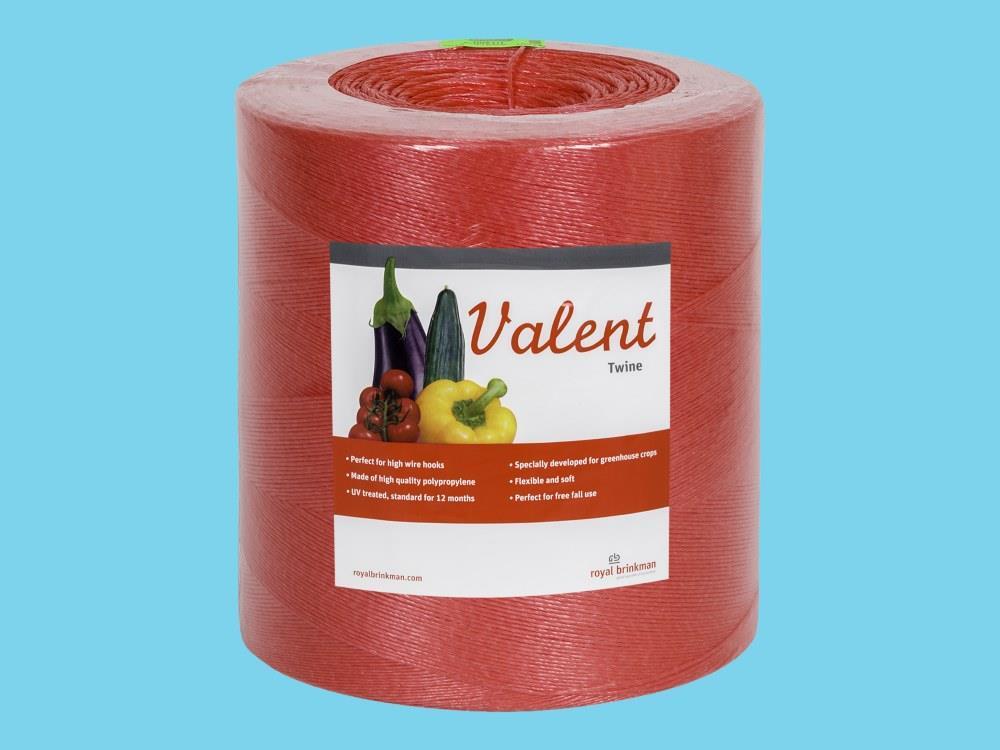 Touw Valent Twine 1/1000 rood 6kg