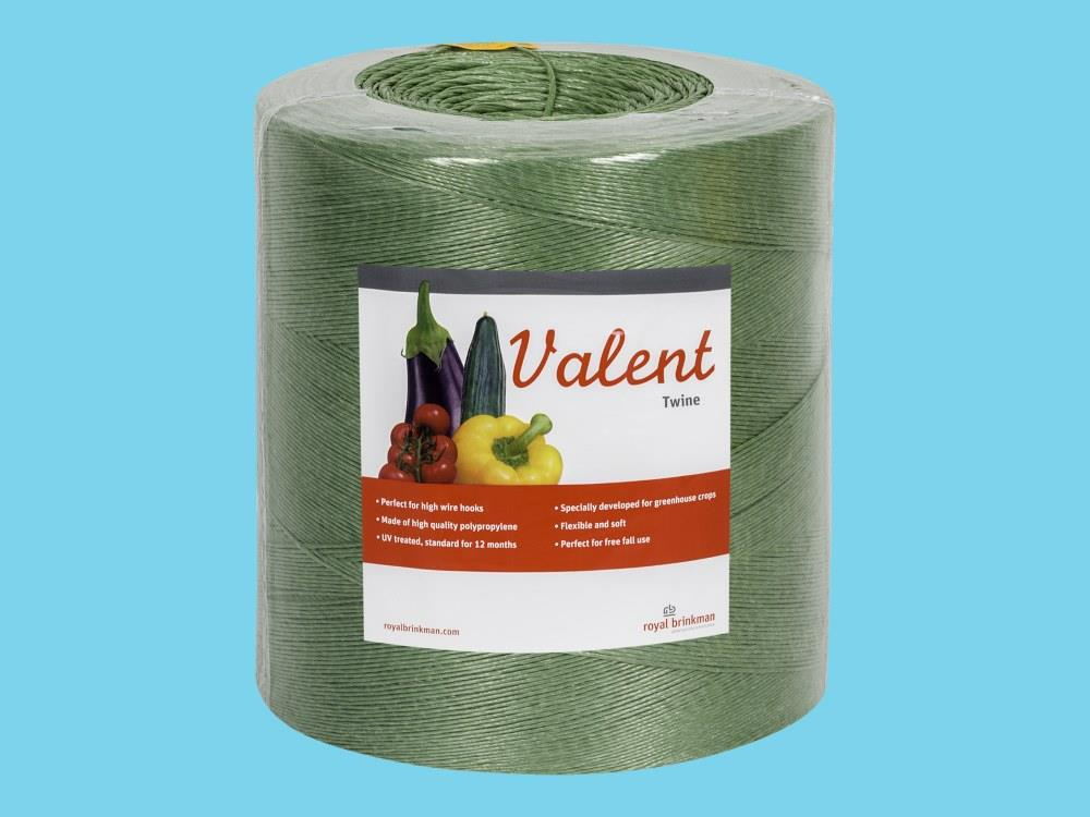 Touw Valent Twine 1/1000 groen 6kg