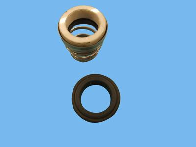 Lowara seal 25mm diameter