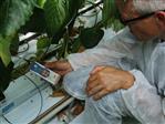 Analoge aansluit kabel t.b.v. Zuurstof Analoge Sensor